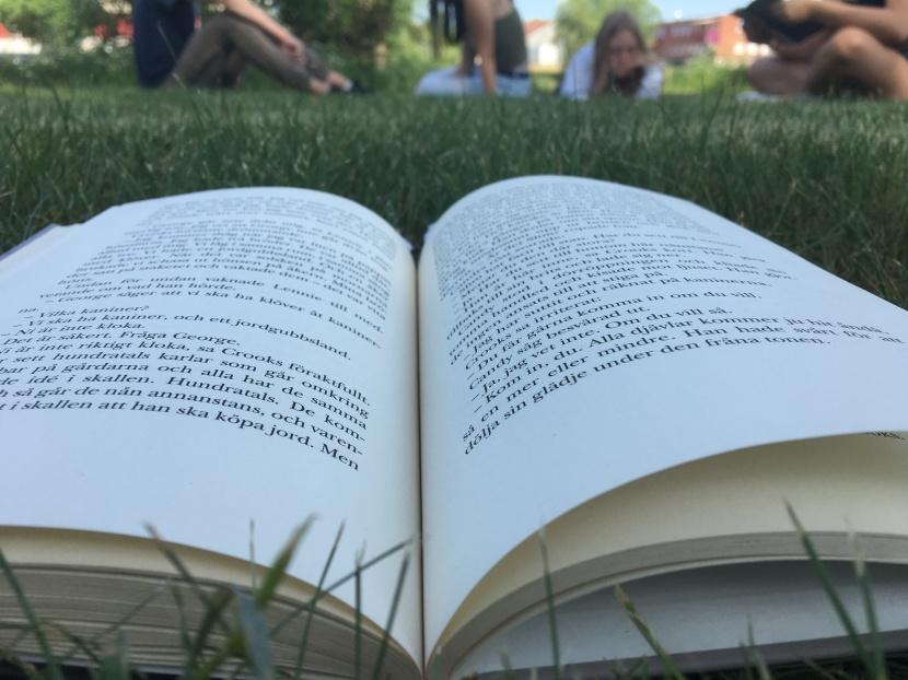 Läsa böcker tillsammans med andra skapar gemenskap